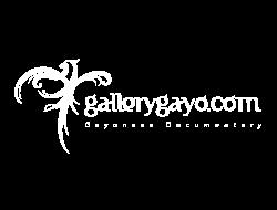 Gallery Gayo
